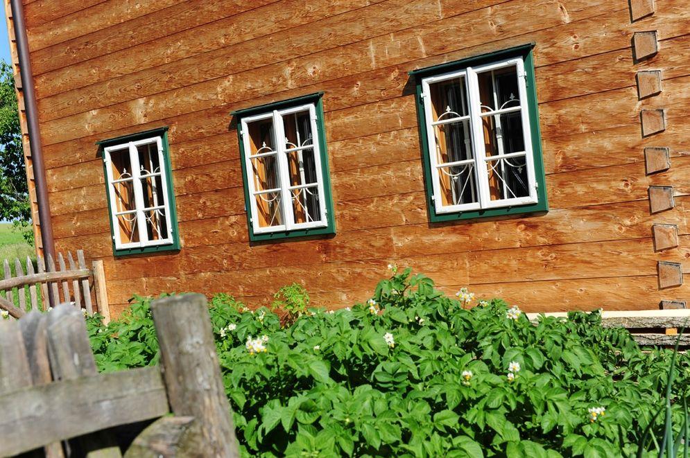 Kastenfenster im Erdgeschoss mit Garten © Brunthaler Massivholzhaus
