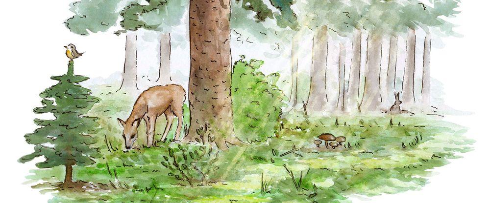 Eine Aquarell-Illustration eines Waldes mit einem Reh, einem Vogel und einem Hasen