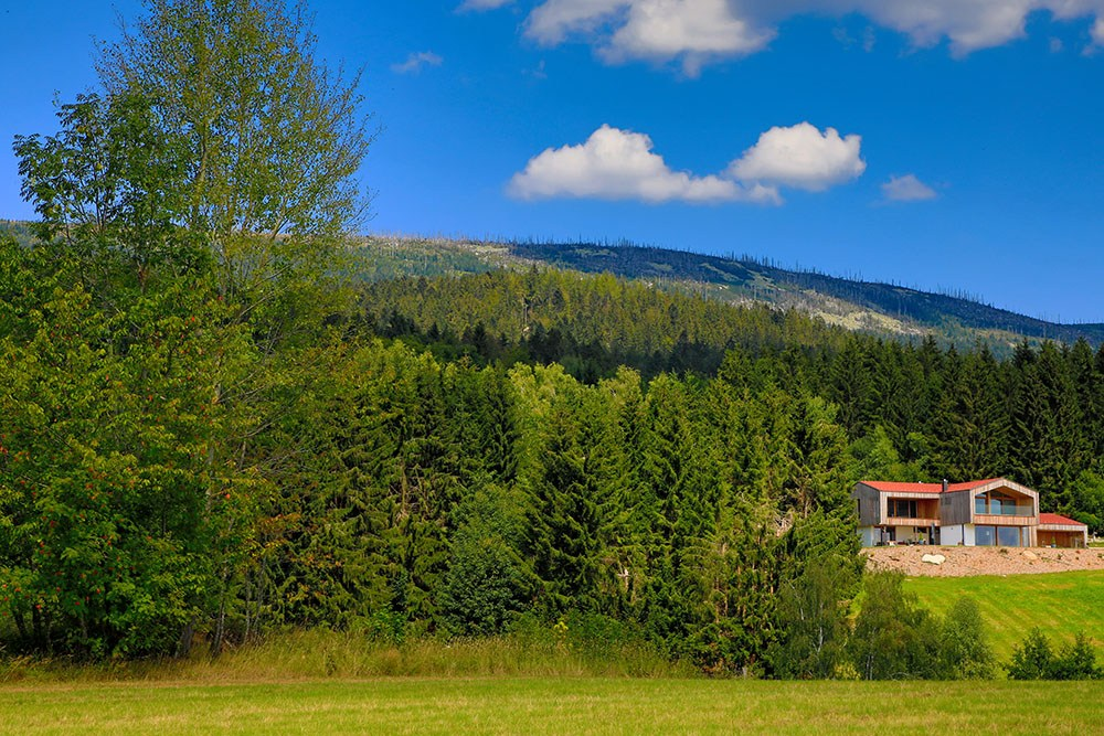 Fernansicht des Holzhauses vor einem bewaldeten Hügel.
